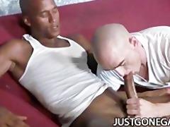white dude worships big black dick