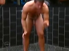 large brother australia - gorilla dick dean
